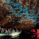 Waitomo-Caves-Glow-Worm-Pictures